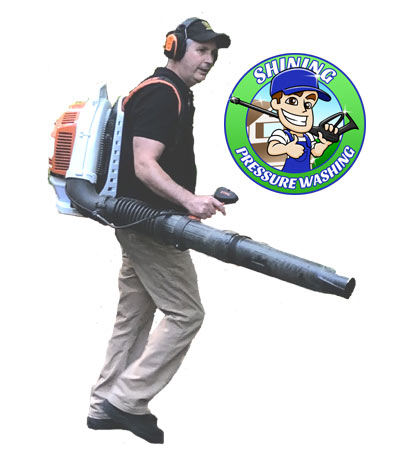 Leaf Blowing Services